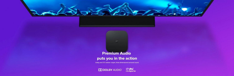Xiaomi Mi Box S, 2GB+8GB 4K TV Box with Voice Remote Dolby DTS Google  Assistant Chromecast
